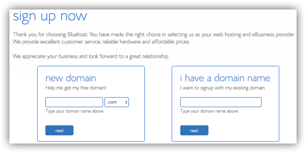 start a blog on bluehost choose domain name
