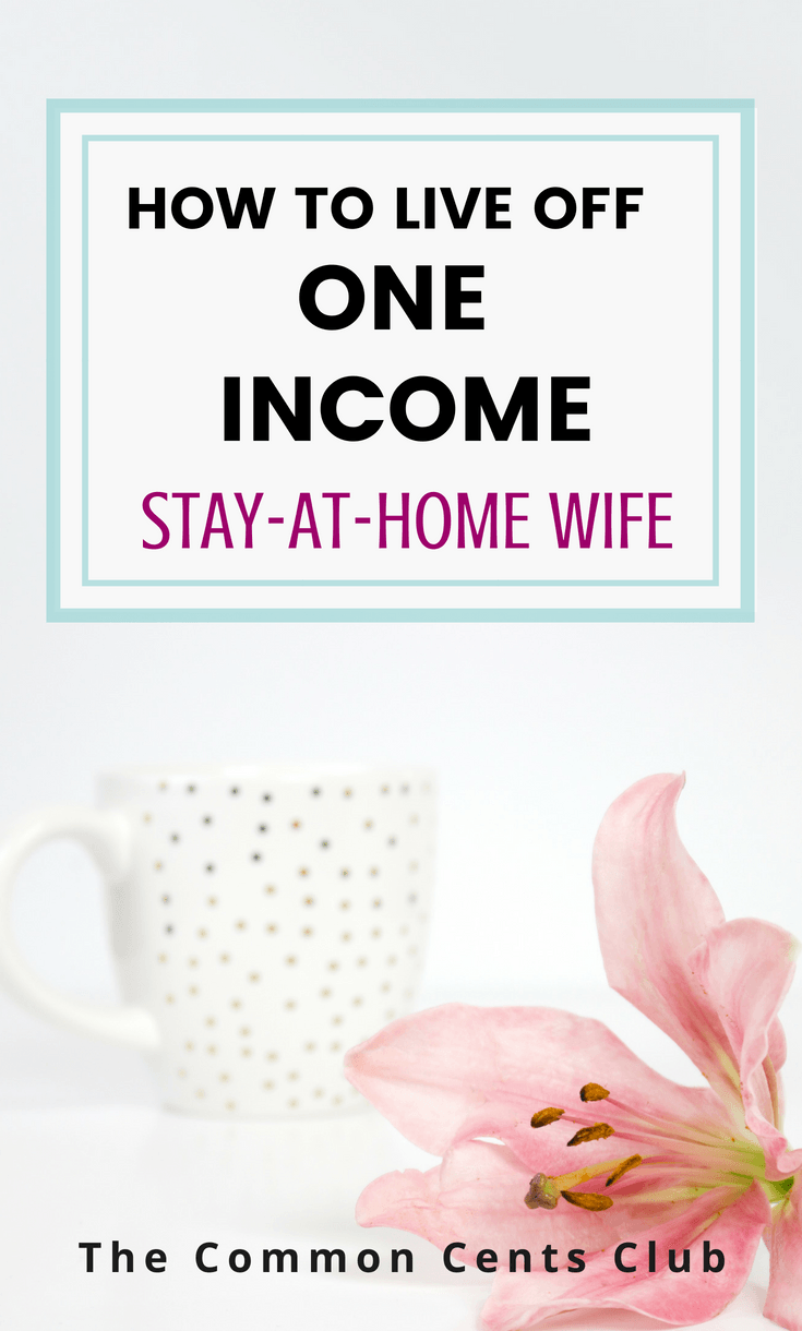 stay at home wife live off one income