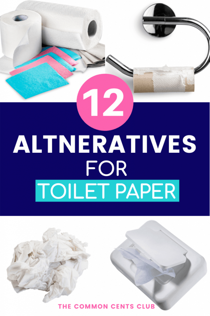 best-substitutes-for-toilet-paper-common-cents-club-pinterest