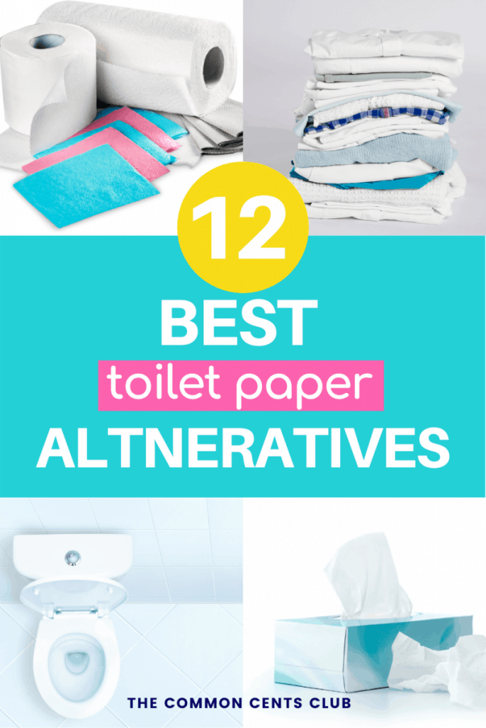 best-toilet-paper-alternatives-substitutes-common-cents-club-pinterest