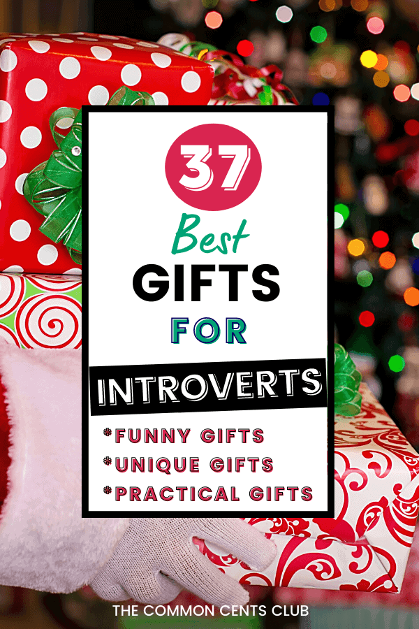 best-gifts-for-introverts-funny-cozy-unique-birthday-christmas-common-cents-club-pinterest